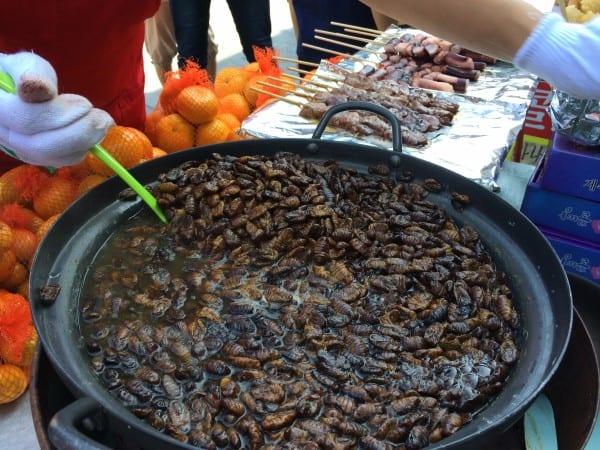 Korean Food Beondegi