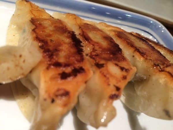 Japanese Food - GYoza