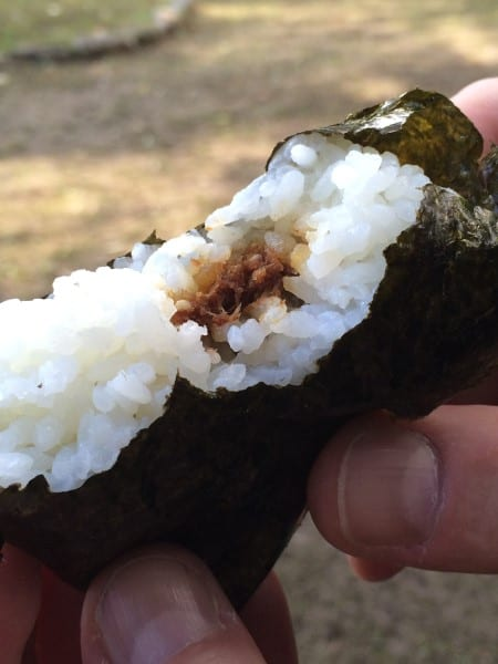 Japanese Food - Onigiri