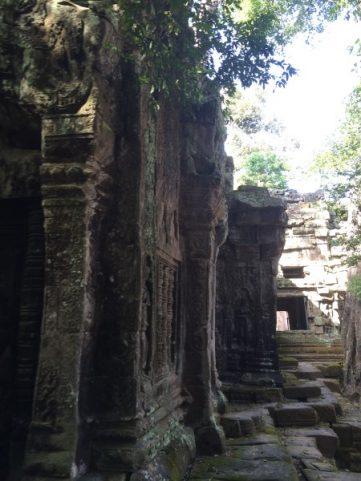 Angkor Wat Temple and Siem Reap-5019