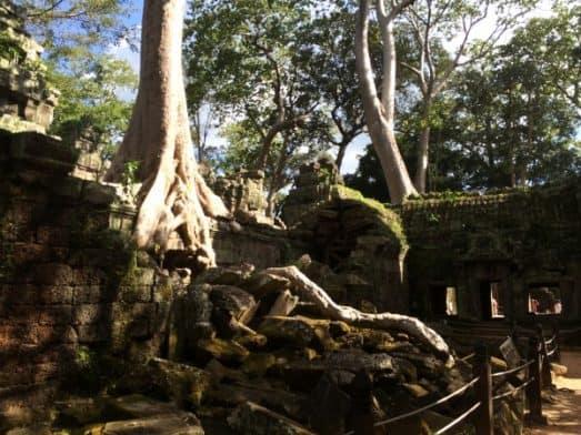 Angkor Wat Temple and Siem Reap-5029