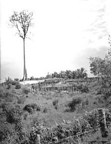 The Camp October 1945