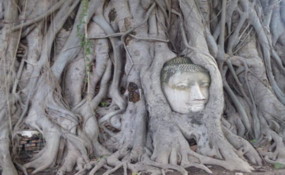 Ayutthaya in Two Days-10565