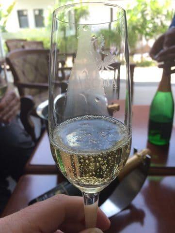Wine-Tasting-India-SOMA-1