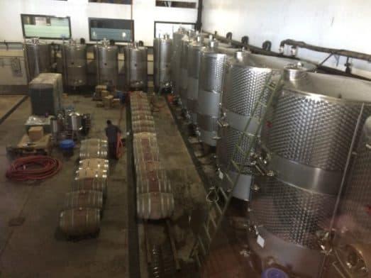 Wine Tasting India - York (1)