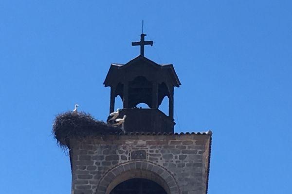 Storks on the Holy Trinity Tower Bansko