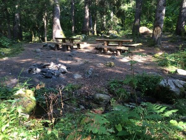 Summer in Bansko BBQ in the woods