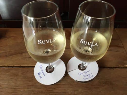 Turkish Wine Tasting Suvla (2)