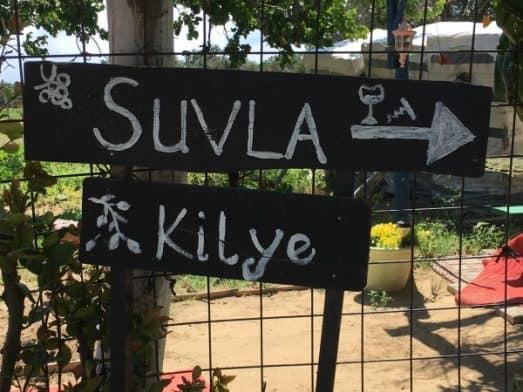 Turkish Wine Tasting Suvla