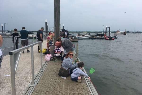 Go Crabbing on Mersea Island