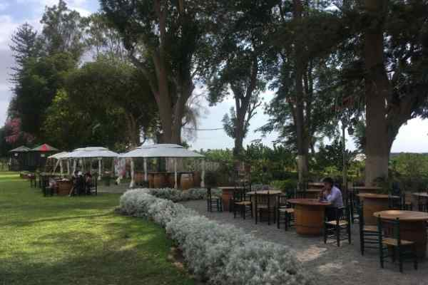Garden at Tacama Vineyard