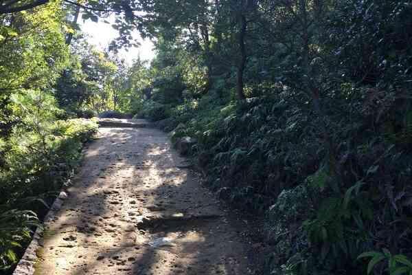 Hiking Trails on Miyajima